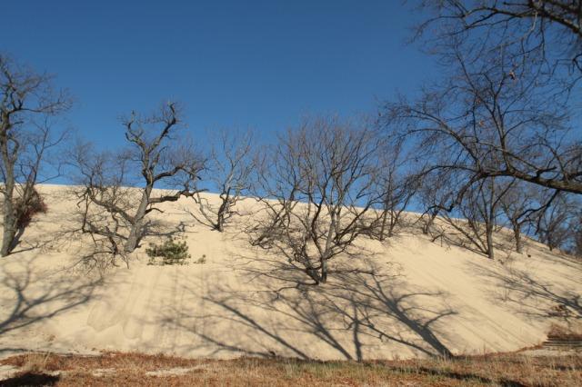 Mt baldy, Gail Fisher Flicker.jpg