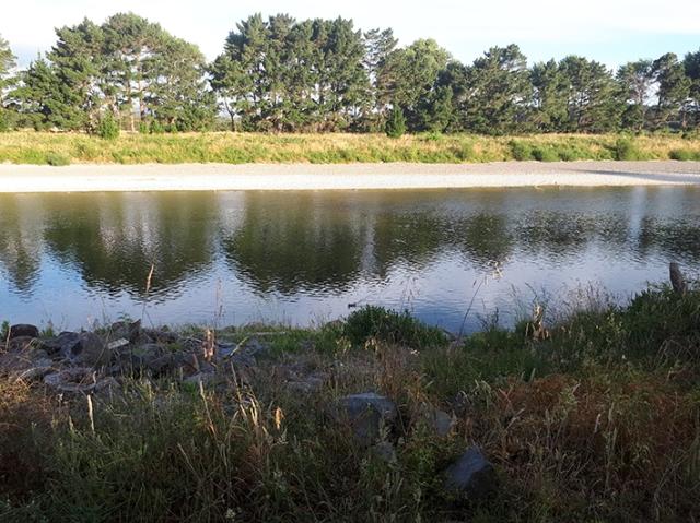 manawatu river.jpg